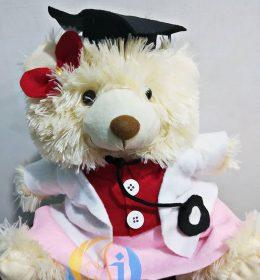 boneka-profesi-dokter
